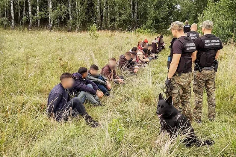 Podlaskie. Imigranci koczują na terytorium Białorusi tuż przy polskiej granicy